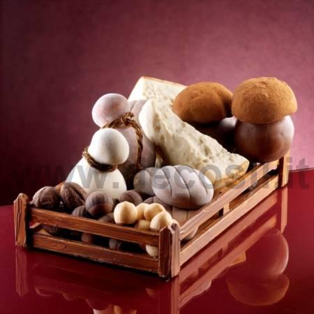 Molde de queso Parmigiano Reggiano o Grana